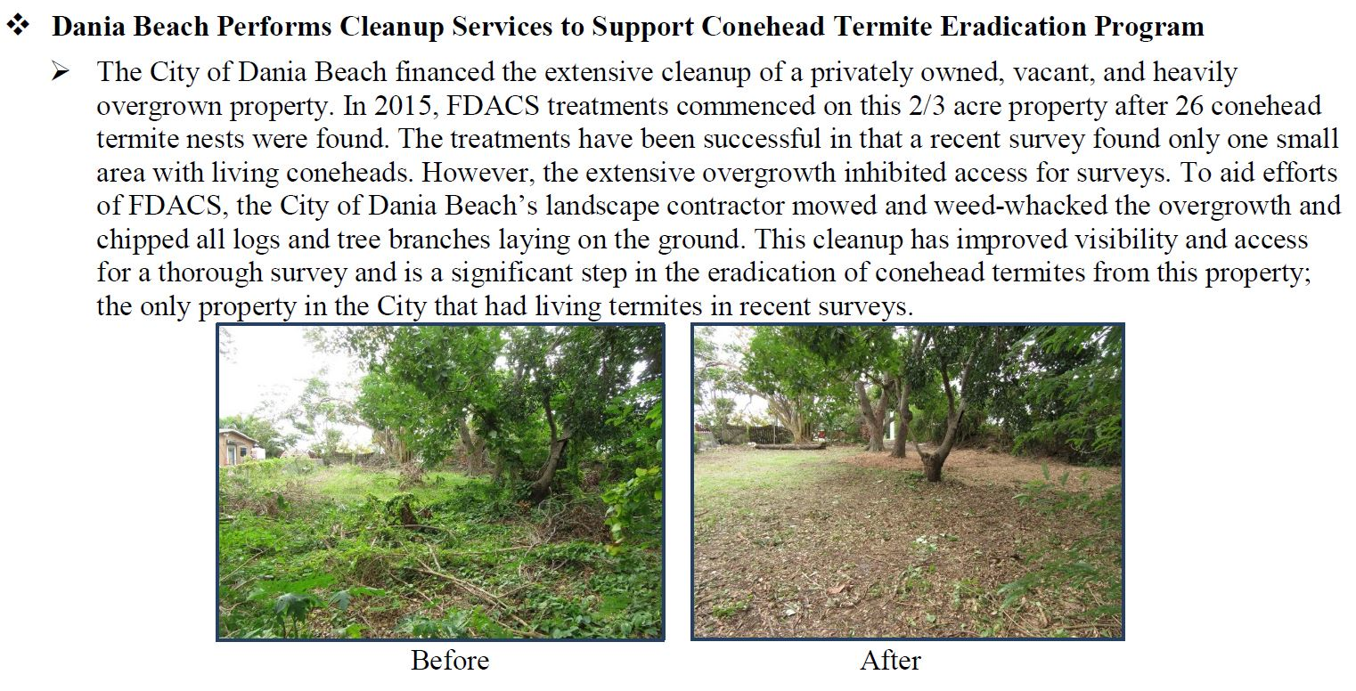 Conehead Termites Property Cleanup 2018 Dania Beach - Commissioner Adam H. Putnam Weekly Division/Of