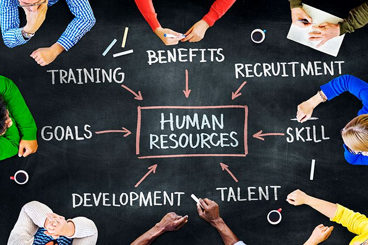 Dania Beach Human Resources